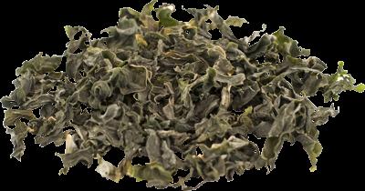Seaweed Dryers