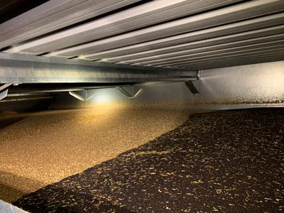 Grain Dryer Crop follow on - Alvan Blanch