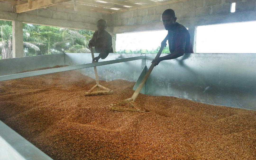 Batch Drier for Paddy Rice – Makeni – Sierra Leone
