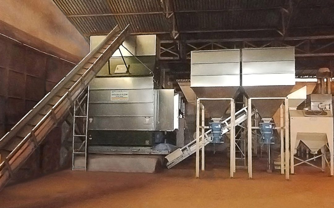 Cocoa Drying and Cleaning System – Nzerekore – Guinea