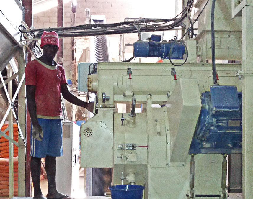 Feedmill with Pelleting System – Nazawara State – Nigeria